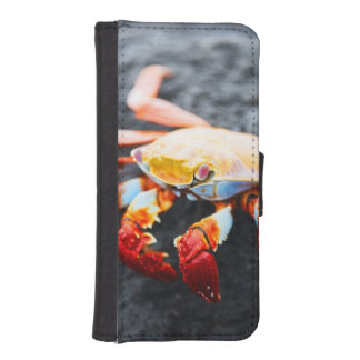 Sally lightfoot crab on a black lava rock iPhone SE/5/5s wallet case
