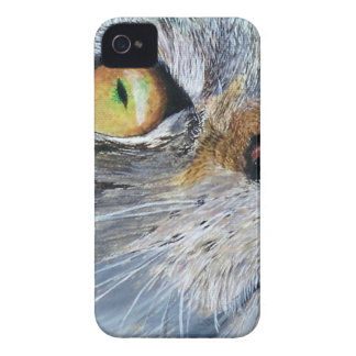 Sally the Tabby Cat Case-Mate iPhone 4 Case