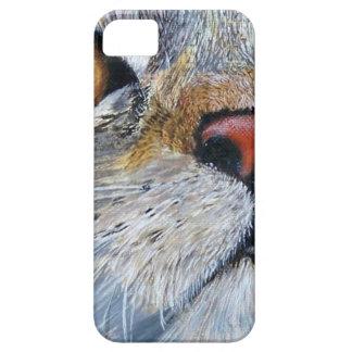 Sally the Tabby Cat iPhone SE/5/5s Case
