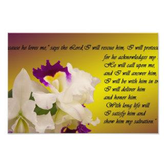 Salmo 91 fotografía