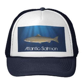 Salmón atlántico - gorra de la pesca