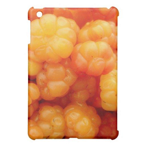 salmon berries iPad mini case