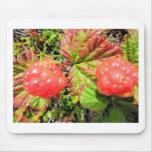 salmon berries mousepad