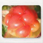 salmon berry ak mouse pad