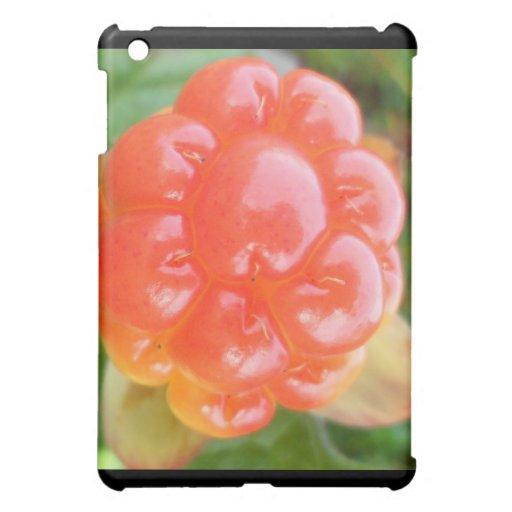 salmon berry cover for the iPad mini
