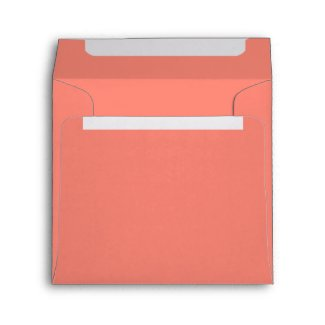 Salmon Birthday Party Square Envelope envelope