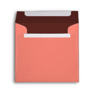 Salmon Birthday Party Square Envelope - Brown envelope