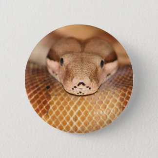 Salmon Boa Button