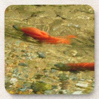 Salmon Coaster