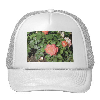 Salmon Colored Rose Trucker Hat