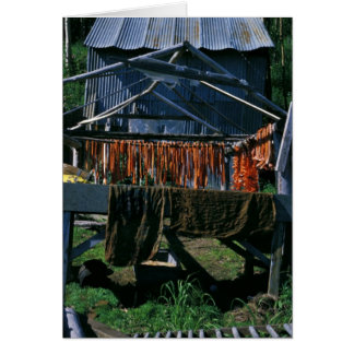 Salmon Drying on Racks at Kaltag Greeting Card