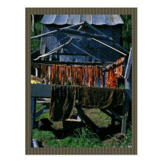Salmon Drying on Racks at Kaltag Postcard