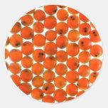 Salmon Egg Stickers