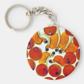 Salmon Eggs and Fry Basic Round Button Keychain