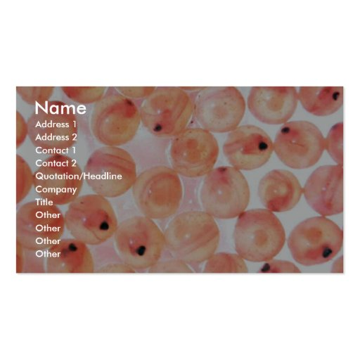 Salmon Eggs Double-Sided Standard Business Cards (Pack Of 100)