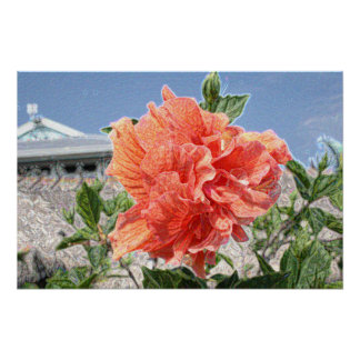 salmon hibiscus abstract sparkle building poster