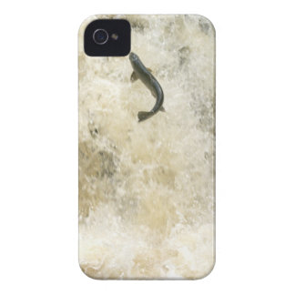 Salmon iPhone 4 Case-Mate Barely There