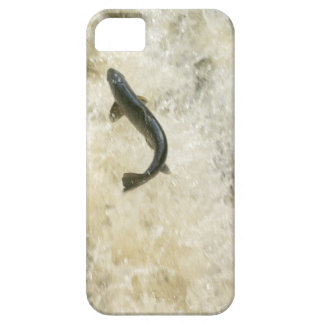 Salmon iPhone 5 Case-Mate ID iPhone SE/5/5s Case