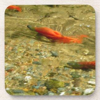 Salmon on the Run Coasters