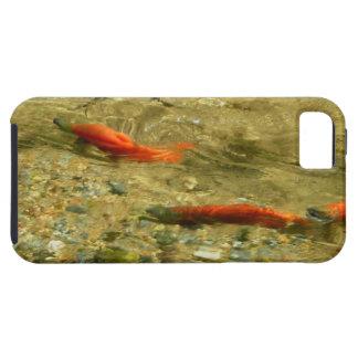 Salmon on the Run iPhone 5 Case