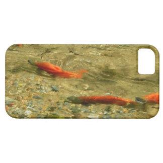Salmon on the Run Phone Case