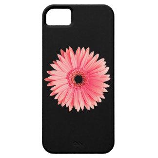 Salmon Pink Daisy on Black - Customized Daisies iPhone SE/5/5s Case