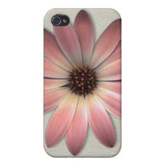 Salmon Pink Daisy on Stone Leather iPhone 4/4S Cases