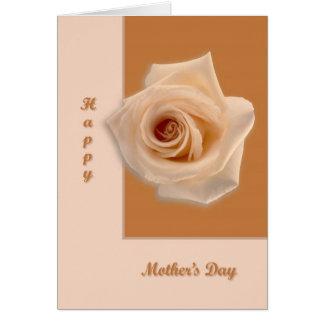 Salmon Rose Card