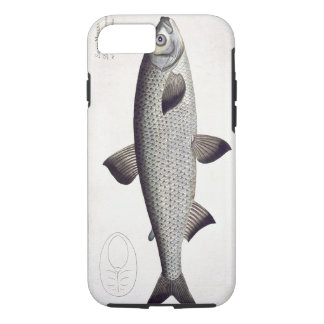 Salmon (Salmo Maraena) plate XXVII from 'Ichthyolo iPhone 7 Case