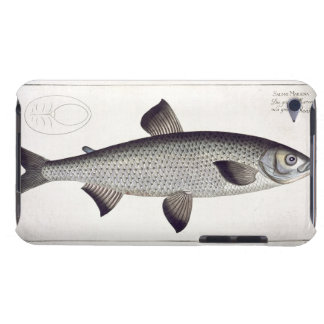 Salmon (Salmo Maraena) plate XXVII from 'Ichthyolo iPod Touch Case-Mate Case