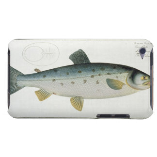 Salmon (Salmo Salar) plate XX from 'Ichthyologie, Barely There iPod Cover