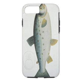 Salmon (Salmo Salar) plate XX from 'Ichthyologie, iPhone 7 Case