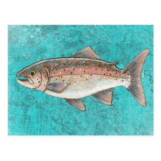 Salmon Sketch Postcard