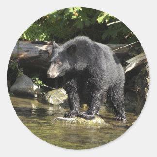 """Salmon Spotting"" Black Bear Gifts Classic Round Sticker"