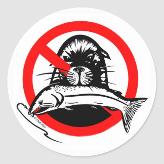 Salmon Thief Sticker