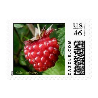 Salmonberry Rubus spectabilis Postage