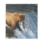Salmones de cogida de Alaska del oso de Brown en l Bloc De Papel