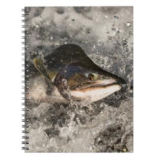 Salmones de salto libro de apuntes con espiral