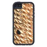 Salmones por la pesca con mosca de Patternwear© iPhone 5 Funda