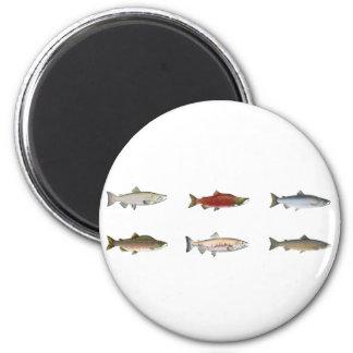 Salmones salvajes imán redondo 5 cm