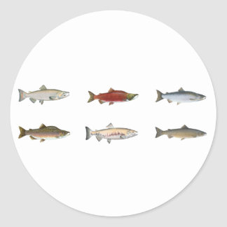 Salmones salvajes pegatina redonda