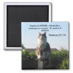 Salmos 27:14 y gato magnet