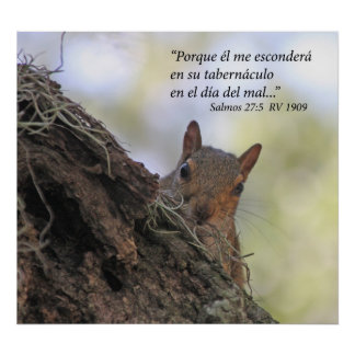 Salmos 27-5 con Ardilla Poster