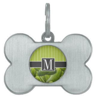 Salmuera verde; Salmueras Placa Mascota