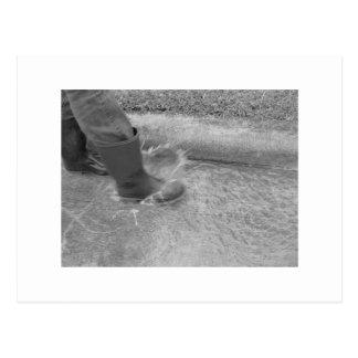 Salpicar el agua tarjeta postal