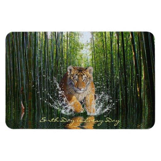 Salpicar el tigre Cub y el imán de bambú del arte