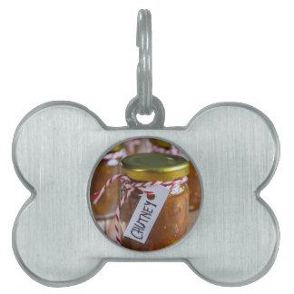 Salsa picante de la piña de la cebolla en la placas de mascota
