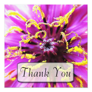 Salsify Flower Thank You Cards