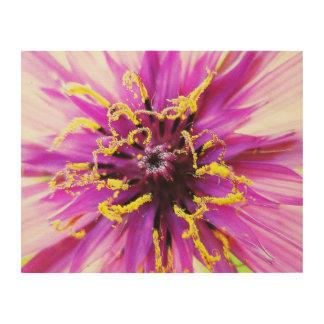 Salsify Flower Wood Wall Art