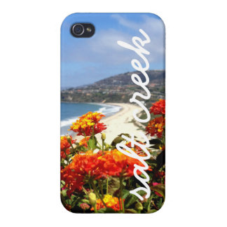 Salt Creek Beach iPhone 4/4S Cases